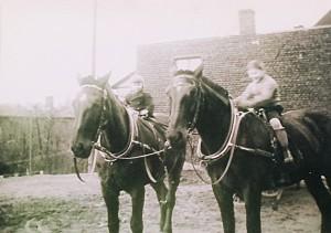 Paul III. und Kutscher Karl beim Einschirren